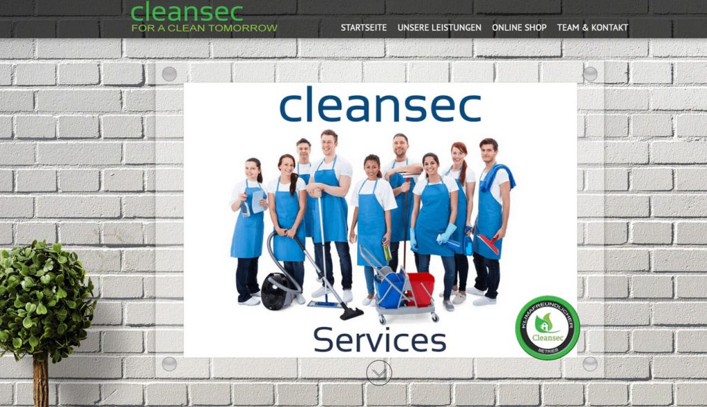 Cleansec-Services