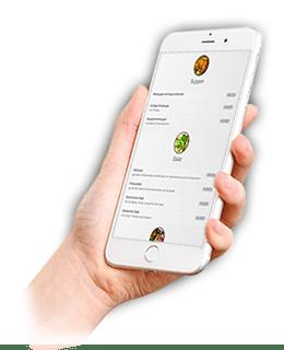 online Bestellung für Restaurants auf Handy